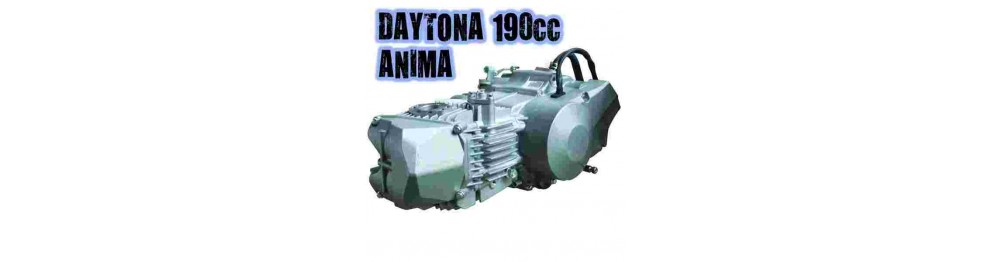 Motor daytona